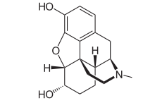 220px-Dihydromorphine 2D structure svg.png